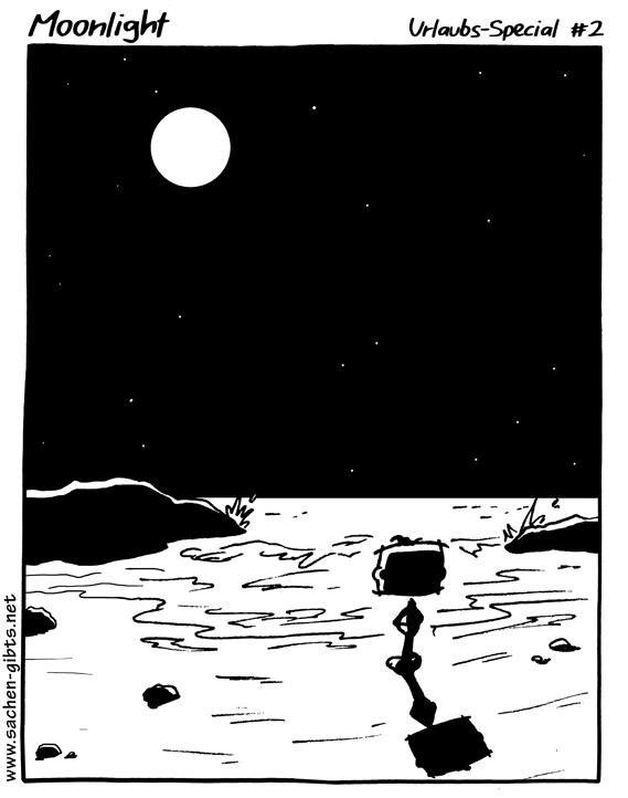 310_Moonlight