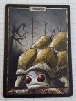 Spielkarte-Schildkröte