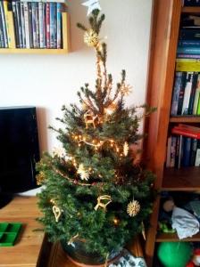 Weihnachtsbaum_Taubner