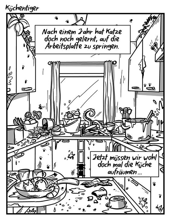 580_Küchentiger